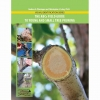 Field Guide to Young and Small Tree Pruning